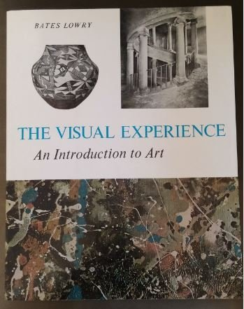 9780139424908: THE VISUAL EXPERIENCE: AN INTRODUCTION TO ART