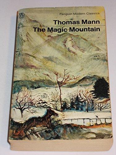 9780140014754: The Magic Mountain (Modern Classics)