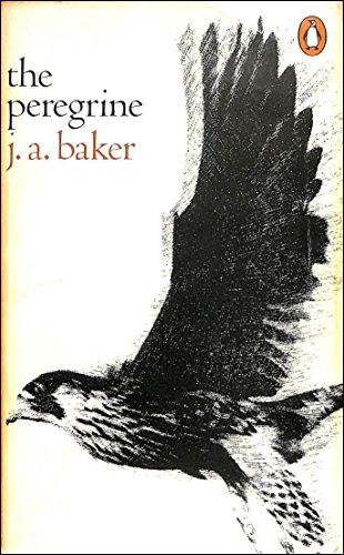 9780140030594: The Peregrine