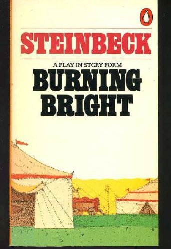 9780140049992: Burning Bright: A Play in Story Form