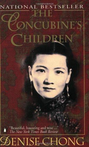 9780140126020: Concubines Children
