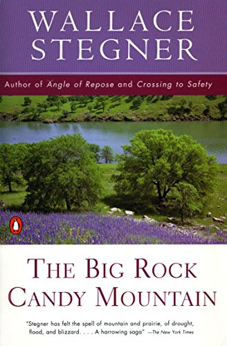 9780140139396: The Big Rock Candy Mountain (Contemporary American Fiction)