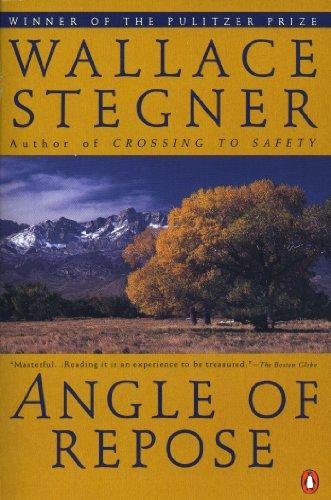 9780140169300: Angle of Repose (Contemporary American Fiction)