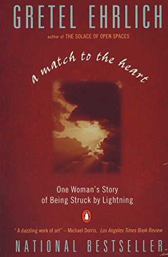 9780140179378: A Match to the Heart: One Woman's Story of Being Struck By Lightning