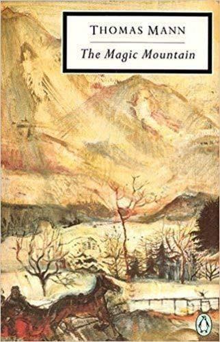 9780140181449: The Magic Mountain (Twentieth Century Classics S.)