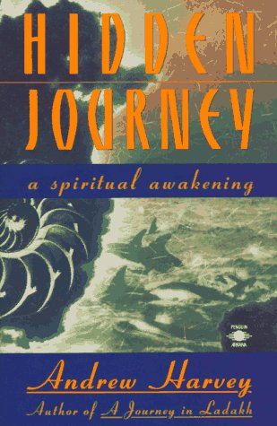 9780140194487: Hidden Journey: A Spiritual Awakening