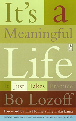 9780140196245: It's a Meaningful Life: It Just Takes Practice