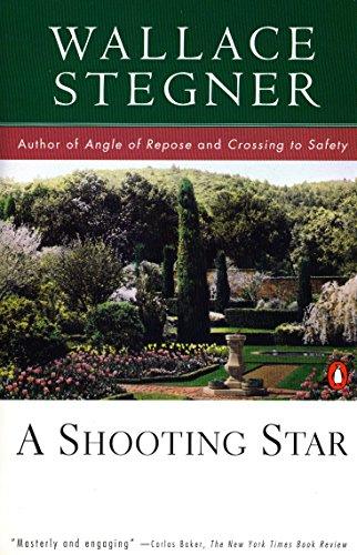 9780140252415: A Shooting Star