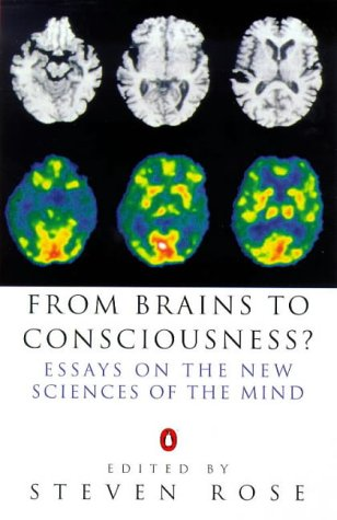 9780140259650: From Brains to Consciousness? (Allen Lane Science)