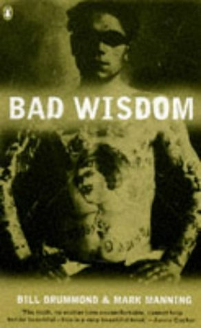 9780140261189: Bad Wisdom: The Lighthouse at the Top of the World