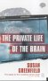 9780140264913: The Private Life of the Brain (Penguin Press Science)