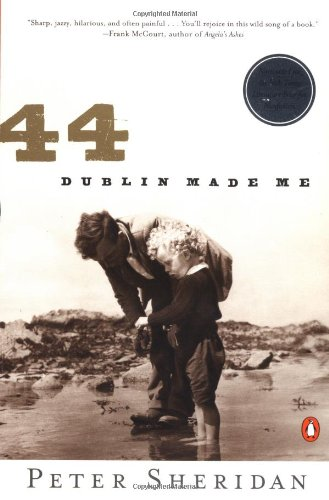 9780140286410: 44: Dublin Made Me