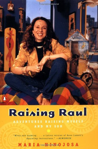Raising Raul: Adventures Raising Myself and My Son: Hinojosa, Maria