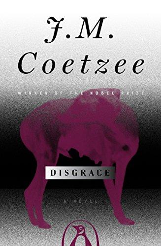 9780140296402: Disgrace: A Novel