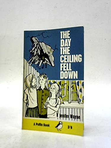 9780140302585: The Day the Ceiling Fell Down (Puffin Books)