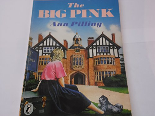 9780140323191: The Big Pink (Puffin Books)