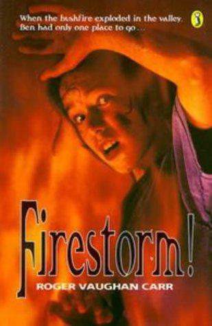 9780140341010: Firestorm! (Puffin Books)