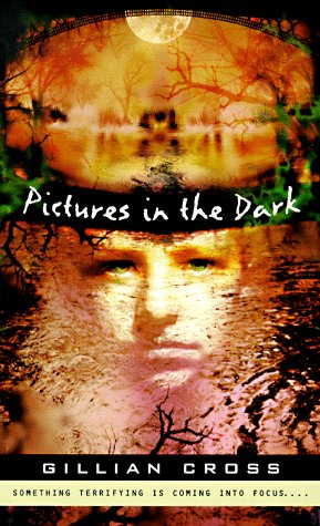 9780140389586: Pictures in the Dark (Puffin Novel)