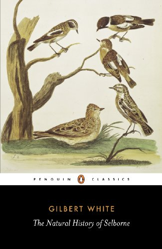 9780140431124: The Natural History of Selborne (Penguin English Library)