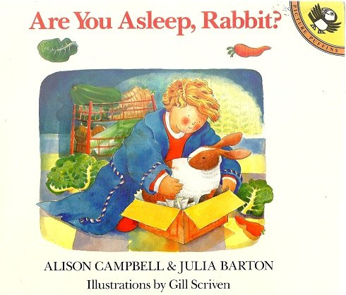 9780140544954: Are You Asleep, Rabbit? (Picture Puffin)