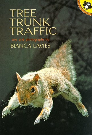 Tree Trunk Traffic (Picture Puffins): Bianca Lavies