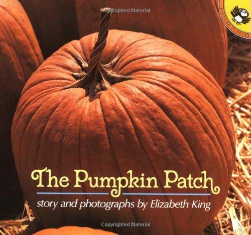 9780140559682: Pumpkin Patch (Picture Puffins)