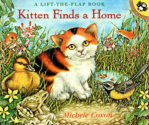 9780140563771: Kitten Finds a Home (Lift-the-Flap, Puffin)