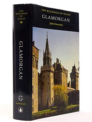 9780140710564: Glamorgan (Buildings of Wales)