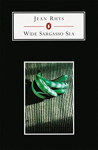 9780140818031: Wide Sargasso Sea (Penguin Student Editions)