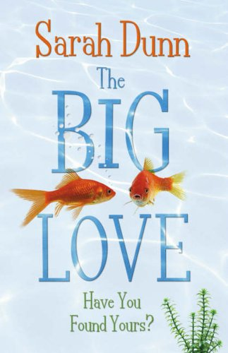 9780141013787: Big Love