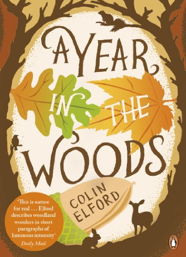 9780141043180: A Year in the Woods: The Diary of a Forest Ranger