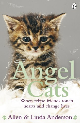 9780141044415: Angel Cats: When feline friends touch hearts and change lives