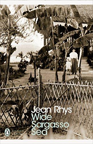 9780141182858: Wide Sargasso Sea: Student Edition (Penguin Modern Classics)