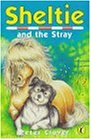 9780141301372: Sheltie 12 Sheltie And The Stray