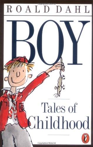 9780141303055: Boy: Tales of Childhood