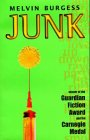 9780141305578: Junk (Puffin Teenage Fiction S.)