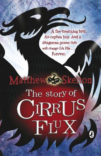 9780141320373: The Story of Cirrus Flux