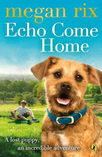 9780141357669: Echo Come Home