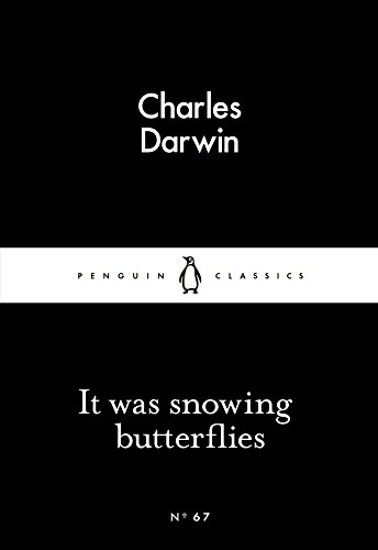 9780141398556: It Was Snowing Butterflies
