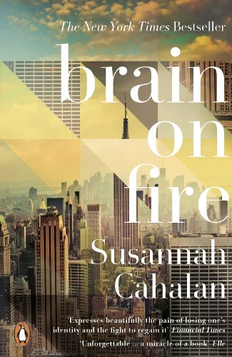 9780141975344: Brain on Fire: My Month of Madness