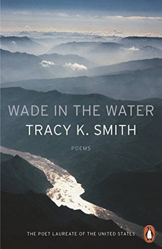 9780141987842: Wade in the Water