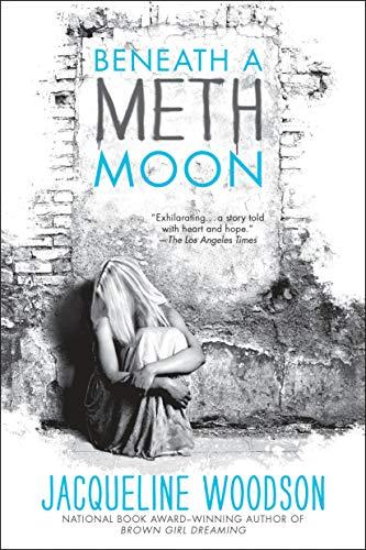 9780142423929: Beneath a Meth Moon: An Elegy