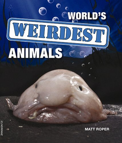 9780143008262: World's Weirdest Animals