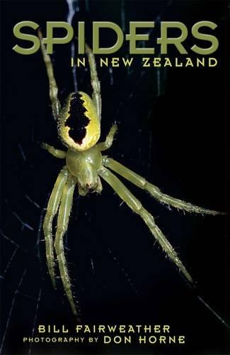 Spiders in New Zealand: Fairweather, Bill