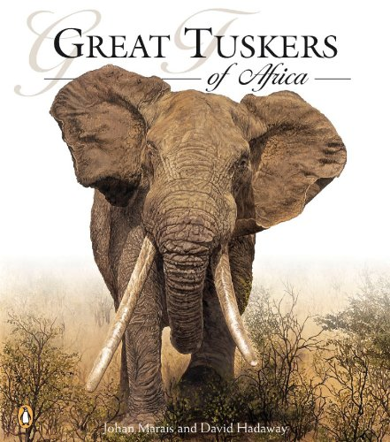 Great Tuskers of Africa: Marais, Johan
