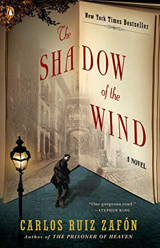 9780143034902: SHADOW OF THE WIND,THE