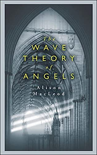 9780143051336: The Wave Theory of Angels