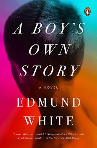 9780143114840: A Boy's Own Story: A Novel
