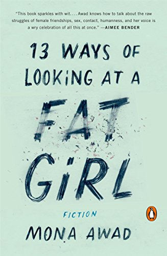 9780143128489: 13 Ways of Looking at a Fat Girl: Fiction