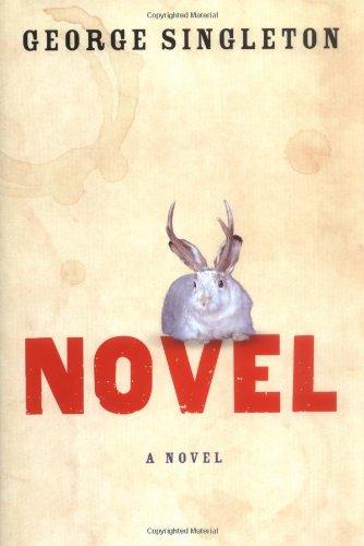 Novel: A Novel: Singleton, George